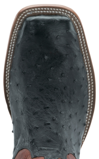 db73bbe1b4a Anderson Bean Men's Black with Rust Lava Top Full Quill Ostrich ...